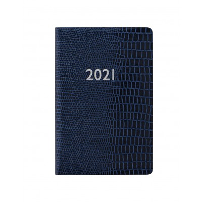 Iguana Mini Pocket 1S/2P 2021